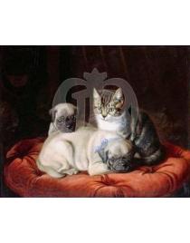 Мопсы и котенок