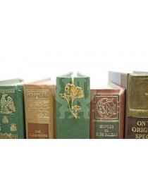 Закладка для книг 'Цветы II'